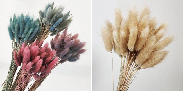 Букет сухоцветов