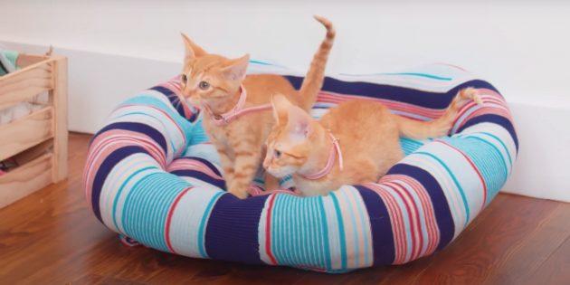 Как сделать лежанку для кошки из свитера своими руками
