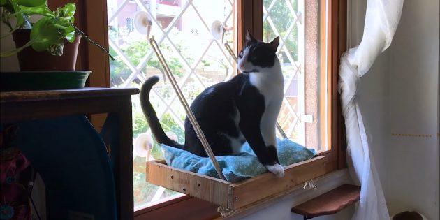 Как сделать подвесную лежанку для кошки из дерева своими руками