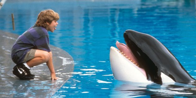 Фильмы про животных: «Освободите Вилли»