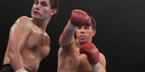 12 лучших фильмов про бокс: от мрачных драм до музыкальных комедий