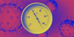 При какой температуре погибает коронавирус: новые данные