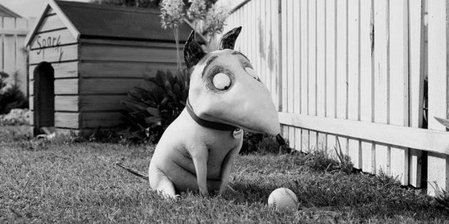 Мультики про собак: «Франкенвини»