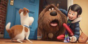 23 отличных мультфильма про собак
