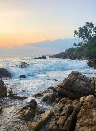 Коронавирус на Шри-Ланке