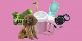 10 товаров для комфортной и безопасной прогулки с собакой