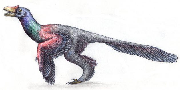 Мифы про Древний мир: динозавры выглядели как рептилии