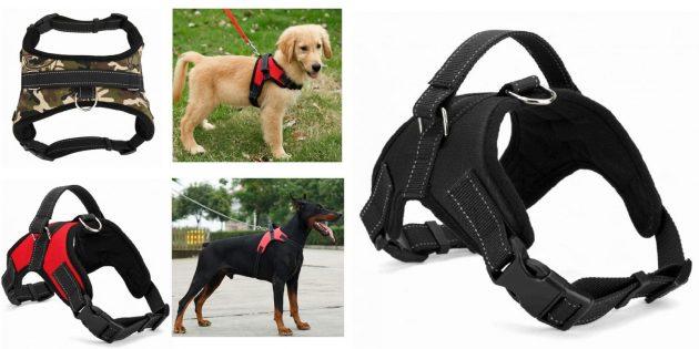 Товары для прогулки с собакой: шлейка