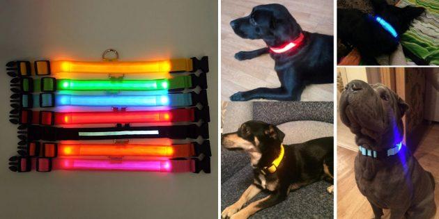 Товары для прогулки с собакой: светящийся ошейник