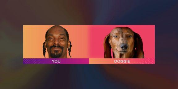 В приложении Gradient теперь можно узнать, на какое животное вы похожи