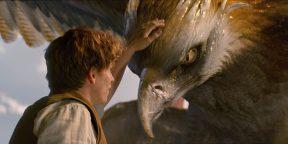 25 фильмов про волшебство для тех, кто устал от реальности