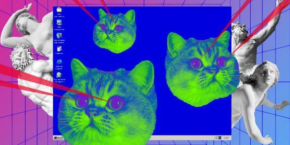 10 причин удалиться из соцсетей, или Почему нам всем стоит стать кошками (и котами!)