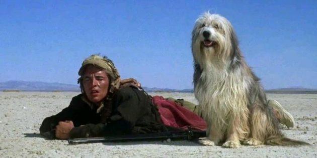 Кадр из фильма «Парень и его пёс»