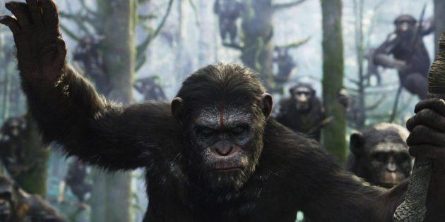 Кадр из фильма «Планета обезьян: Революция»