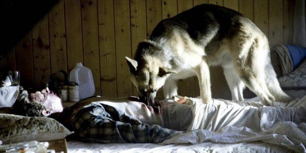 Фильмы про постапокалипсис: «Носители»