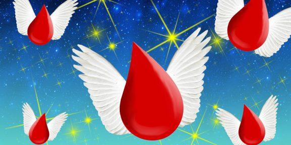 Капля помощи: как стать донором крови