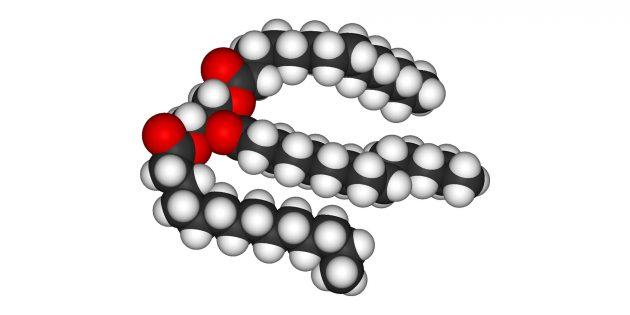 Жиры: модель триглецирида