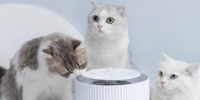 Надо брать: умная поилка для кошек от Xiaomi
