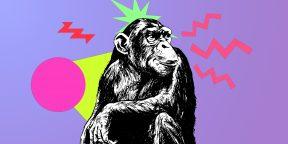 7 самых умных животных в мире