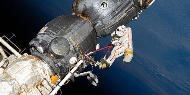 Ужасные вещи на МКС: МКС полна различных бактерий