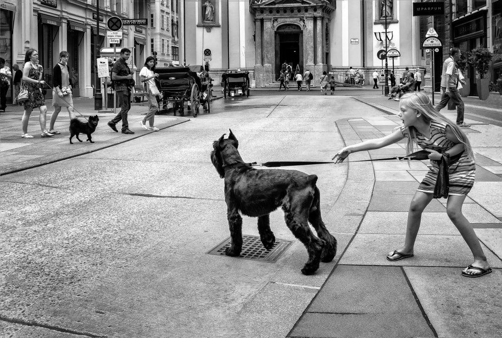 Красивые фотографии: «На улице Вены», Гэри Уайт