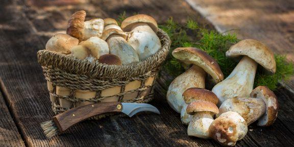 Как и сколько варить белые грибы
