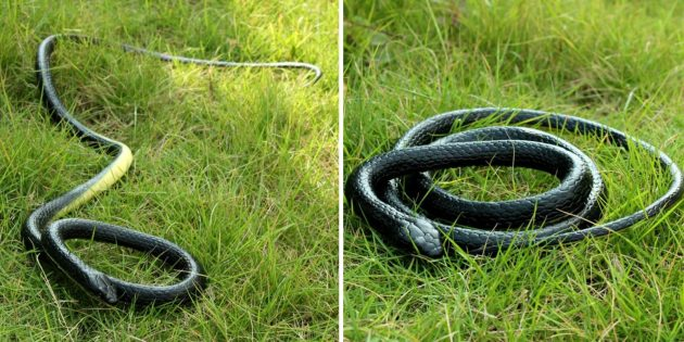 Игрушечная змея
