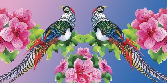 ТЕСТ: Что это за птица? Определите по картинке!