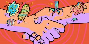Чесотка, сифилис и другие болезни, которые можно подхватить при рукопожатии