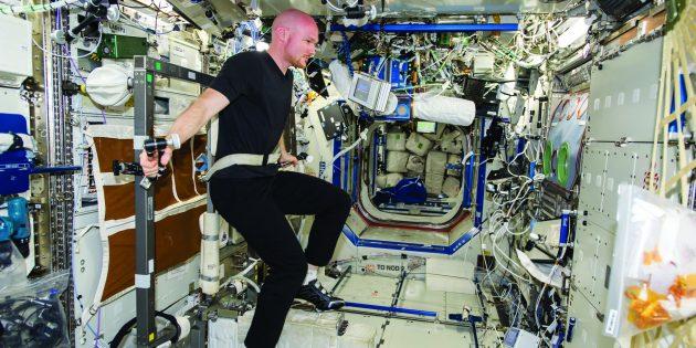 Астронавт ESA Александр Герст на тренажёре на МКС