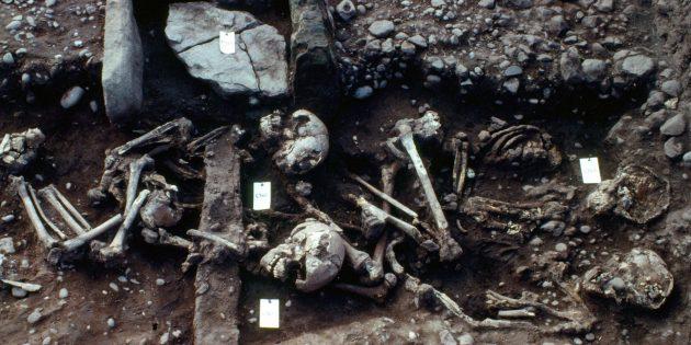 А вот так викинги выглядят на самом деле