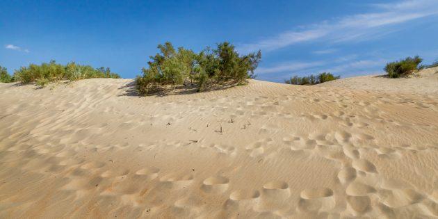 Достопримечательности Анапа: песчаные дюны в Джемете