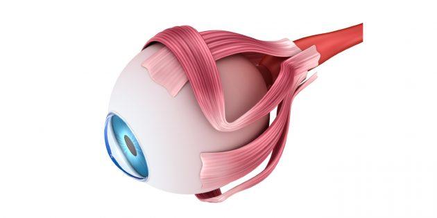 Как появляется бельмо на глазу