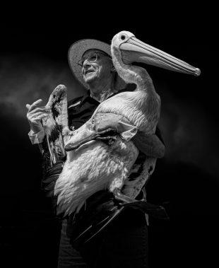 «Владелец пеликана», Тони Лоу