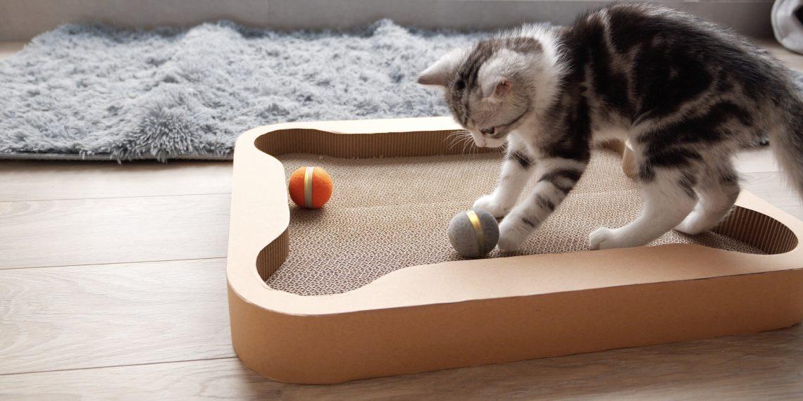 Cheerble Board Game — настольная игра для кошек