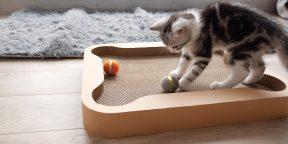 Штука дня: Cheerble Board Game — настольная игра для кошек