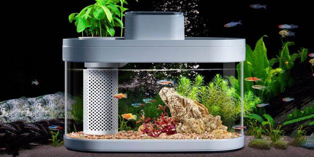 аквариум Xiaomi