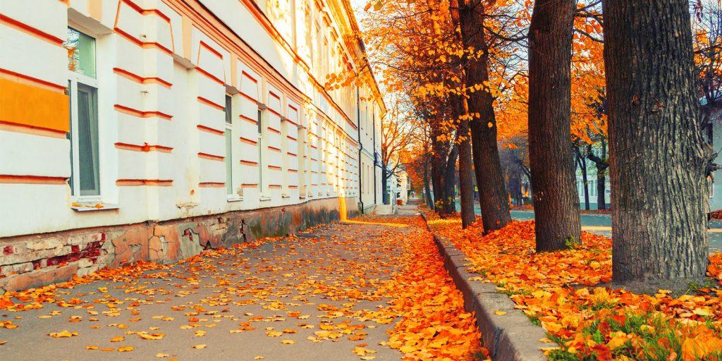 Достопримечательности Великого Новгорода: старый город
