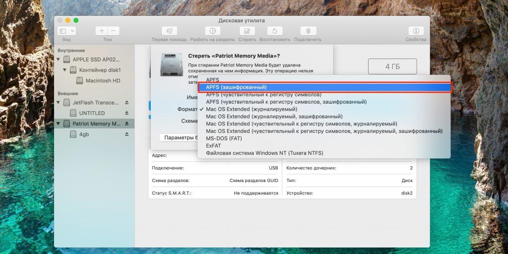 Как поставить пароль на флешку: укажите «APFS (зашифрованный)»