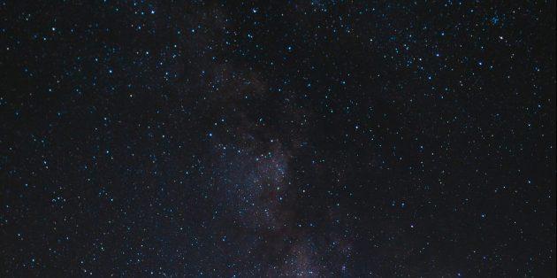 Факты о человеческом теле: люди сделаны из звёзд