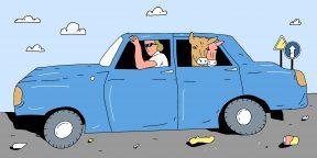 10 ошибок за рулём, которые бесят других водителей