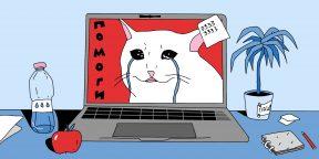 Как вас обманут в интернете: 7 уловок кибермошенников