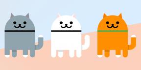 В Android 11 есть скрытая игра, в которой нужно собирать котиков. Вот как её включить
