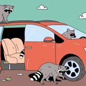 Можно ли застраховать машину только от угона и как оформить полис дешевле? 24 вопроса и ответа об автостраховании