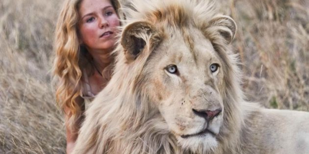 Фильмы про львов: «Миа и белый лев»