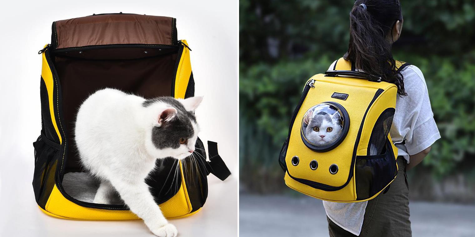 рюкзак для котов