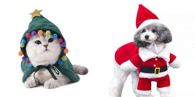 Что подарить подруге на Новый год: новогодний костюм для питомца