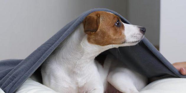Привяжите ленточками одеяло к основе