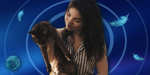 5 вирусных роликов с котом, которые мы сняли на смартфон Realme 6 Pro