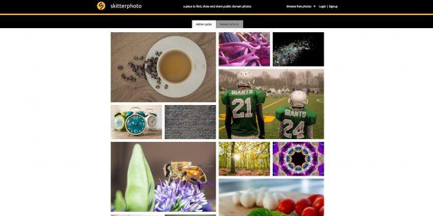 Бесплатные фотостоки: SkitterPhoto